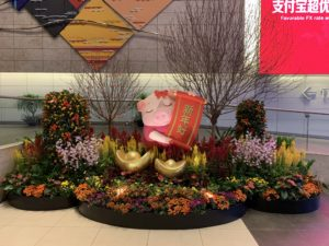 CNY Year of the Pig display at Chiangi Airport